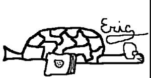 Une tortue de couse